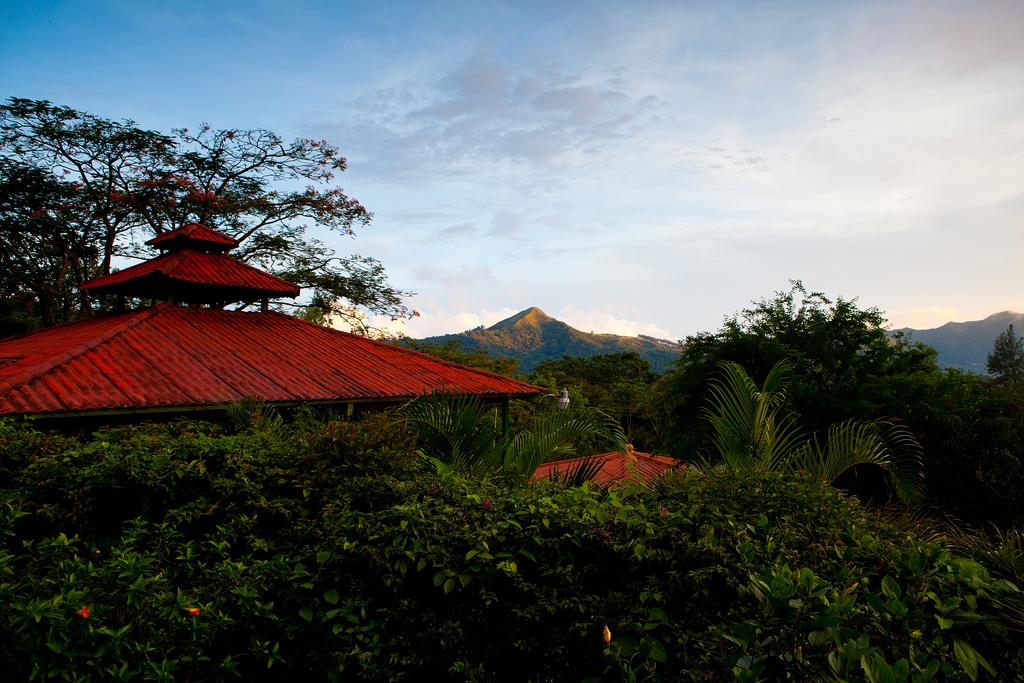 Sunset @ The Golden Frog Inn